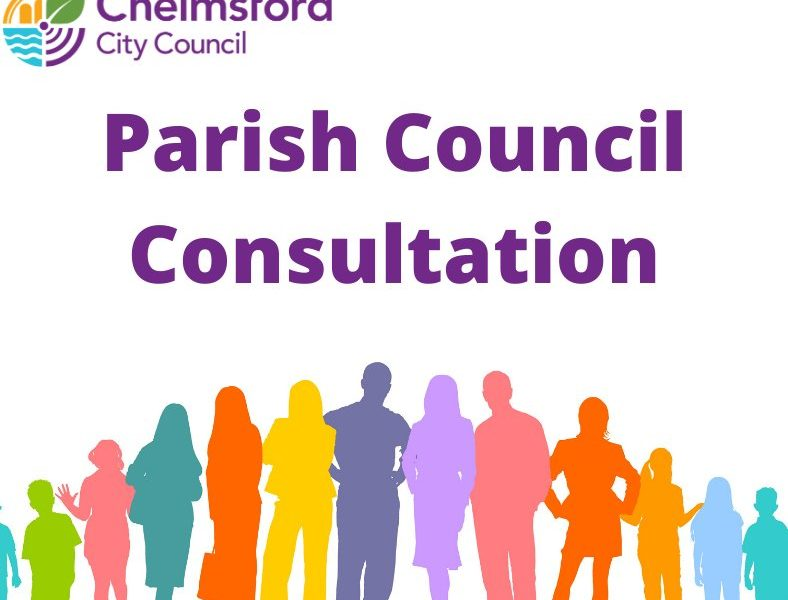 Help shape the future of local democracy in Chelmsford